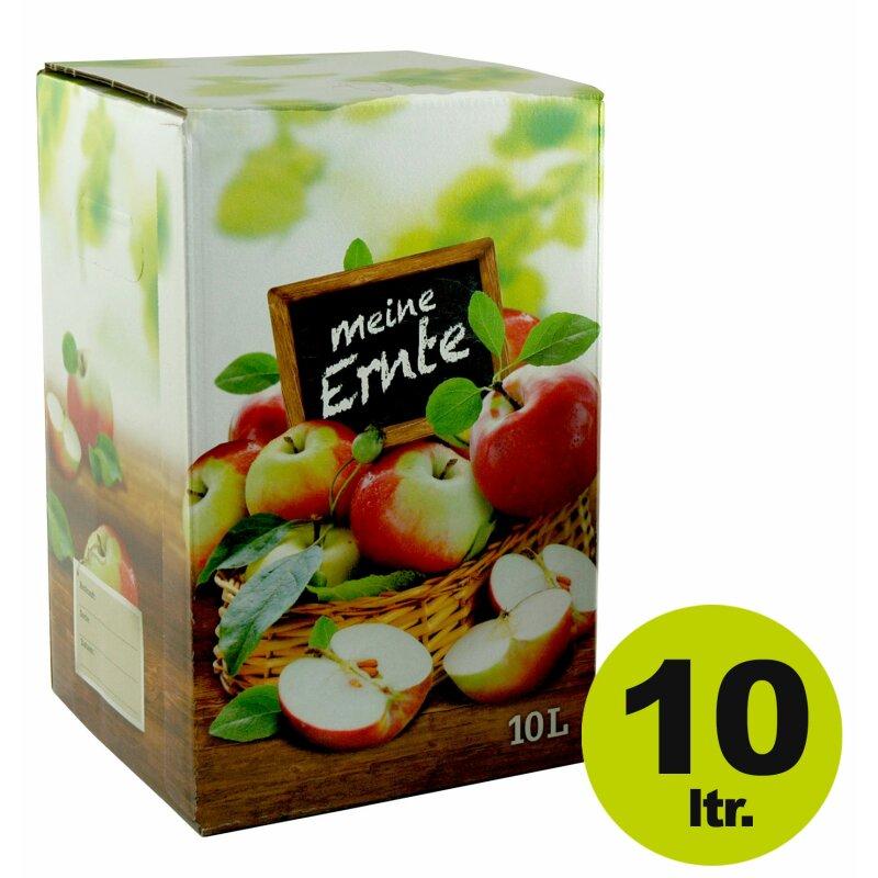 1,30€//1Stk 10 Stück 3 Liter Bag in Box Karton in bourdeaux